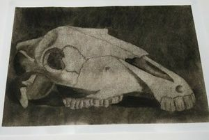 Original Art Work Horse Skull Poster